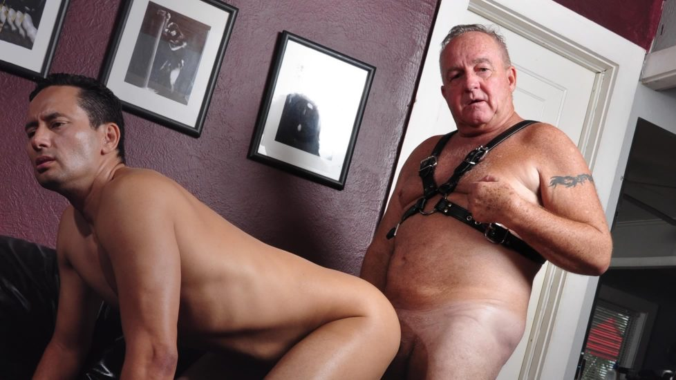 Gay Sir Porn